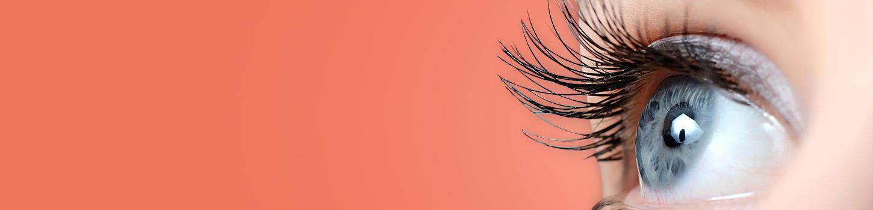 Retina-Optimized-image